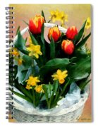 Scarlet And Gold Spiral Notebook