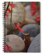 Scarlet Bugler Blossoms On Rocks Spiral Notebook