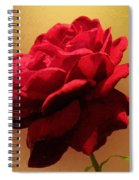 Scarlet Flamenco Spiral Notebook
