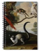Scarlet Macaw Spiral Notebook