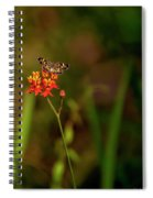 Scarlet Milkweed And Butterfly Spiral Notebook