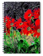 Scarlet Night Spiral Notebook