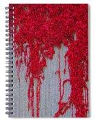 Scarlet Squiggle Spiral Notebook