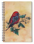 Scarlet Tanager - Acrylic Painting Spiral Notebook