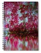 Scarlet Water Spiral Notebook