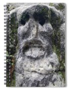 Scary Stone Head Spiral Notebook