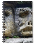 Scary Stone Heads Spiral Notebook