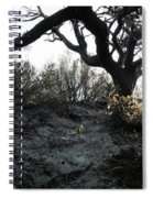Scattered Sun Rays On The Dunes Spiral Notebook
