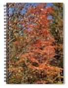 Scenic Autumn  Spiral Notebook