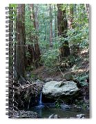 Scents And Subtle Sounds On Mount Tamalpais Spiral Notebook