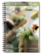 School Of Curiosity 10 Spiral Notebook