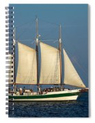 Schooner By Fort Sumter Photograph By Sally Weigand