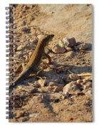 Schreiber's Fringe-fingered Lizard Spiral Notebook