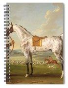 Scipio - Colonel Roche's Spotted Hunter Spiral Notebook