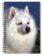 Scooby Spiral Notebook
