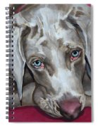 Scooby Weimaraner Pet Portrait Spiral Notebook