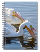 Scooping For Fish Spiral Notebook