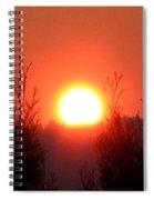 Scorching Sun Spiral Notebook