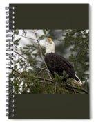 Screamin Eagle Spiral Notebook