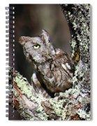 Screech Owl Spiral Notebook