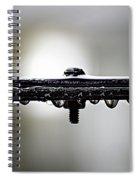 Screw This Rain Spiral Notebook