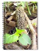 Scrumptious Beauty Spiral Notebook