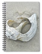 Sculpted By The Atlantic Ocean Spiral Notebook