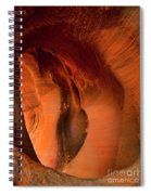 Sculpted By The Elements Spiral Notebook
