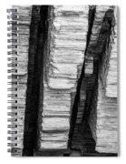 Sculpted Log Spiral Notebook