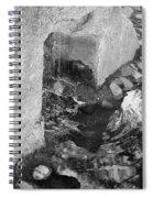 Sculpture Garden IIi In Black And White Spiral Notebook