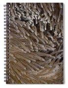 Sea Anemone Closeup Spiral Notebook
