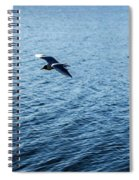 Sea Birds Spiral Notebook