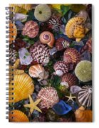 Sea Glass With Sea Shells Spiral Notebook
