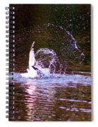 Sea Gull Abstract Spiral Notebook