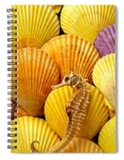 Sea Horse And Sea Shells Spiral Notebook