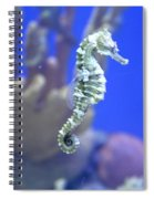 Sea Horse Spiral Notebook