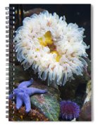 Sea Life Spiral Notebook