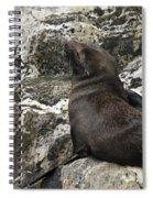 Sea Lion Close-up Spiral Notebook