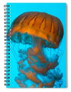 Sea Nettle Jellyfish - Orange And Turquoise Spiral Notebook