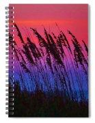 Sea Oat Sunset Spiral Notebook