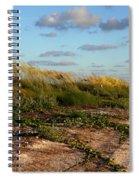 Sea Oats Along The Beach Spiral Notebook