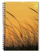 Sea Oats At Dusk Spiral Notebook