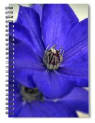 Sea Of Blue Spiral Notebook