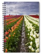 Sea Of Color Spiral Notebook