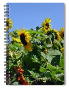 Sea Of Sunshine Spiral Notebook