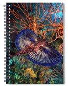 Sea Robin The Flying Gurnard Spiral Notebook