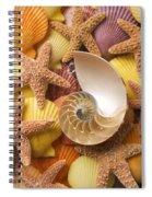 Sea Shells And Starfish Spiral Notebook