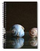 Sea Snails Spiral Notebook