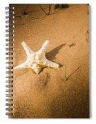 Sea Star Scene Spiral Notebook