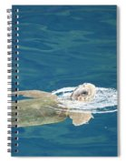 Sea Turtle Spiral Notebook